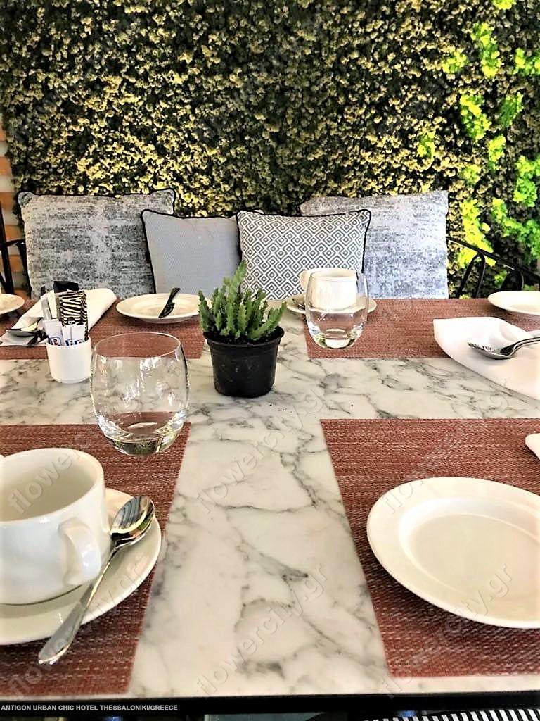 ANTIGON URBAN CHIC HOTEL διατηρημένα φυτά