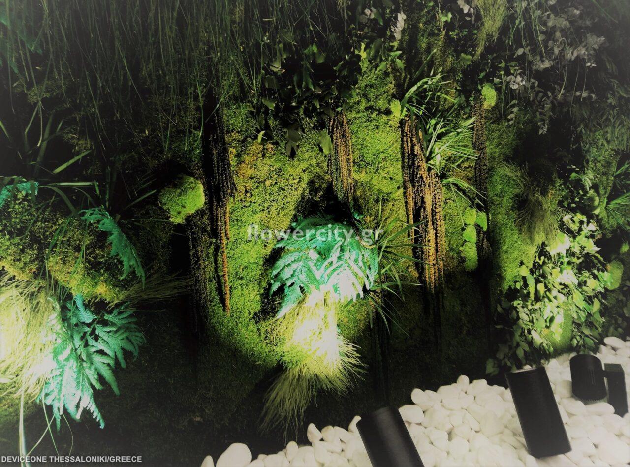 DEVICE ONE διατηρημένα φυτά