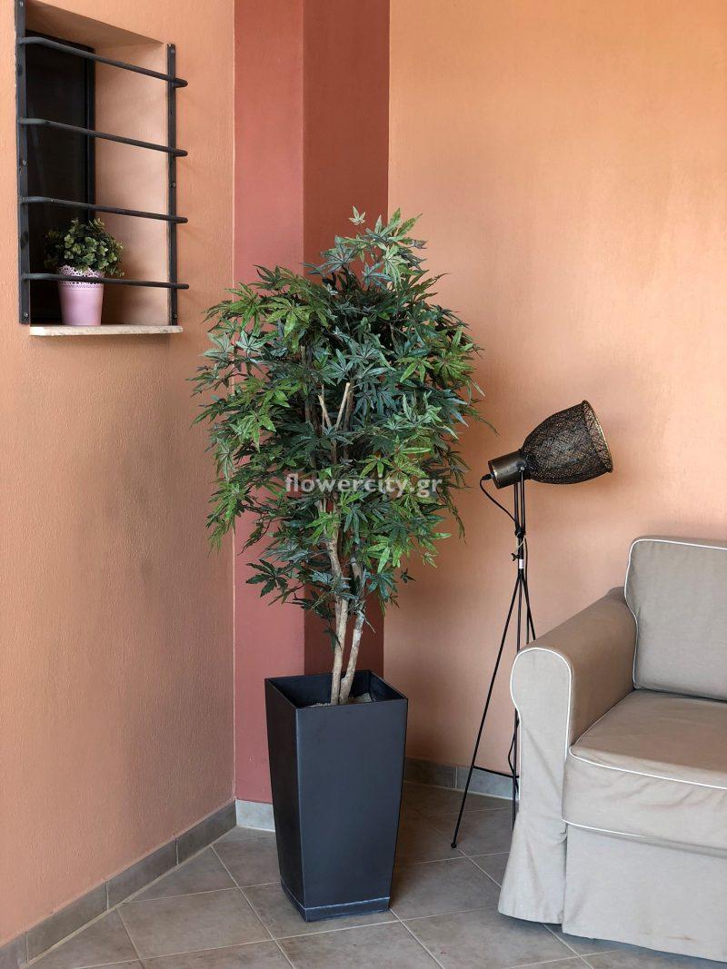 FILIPPOS APARTMENTS τεχνητά φυτά