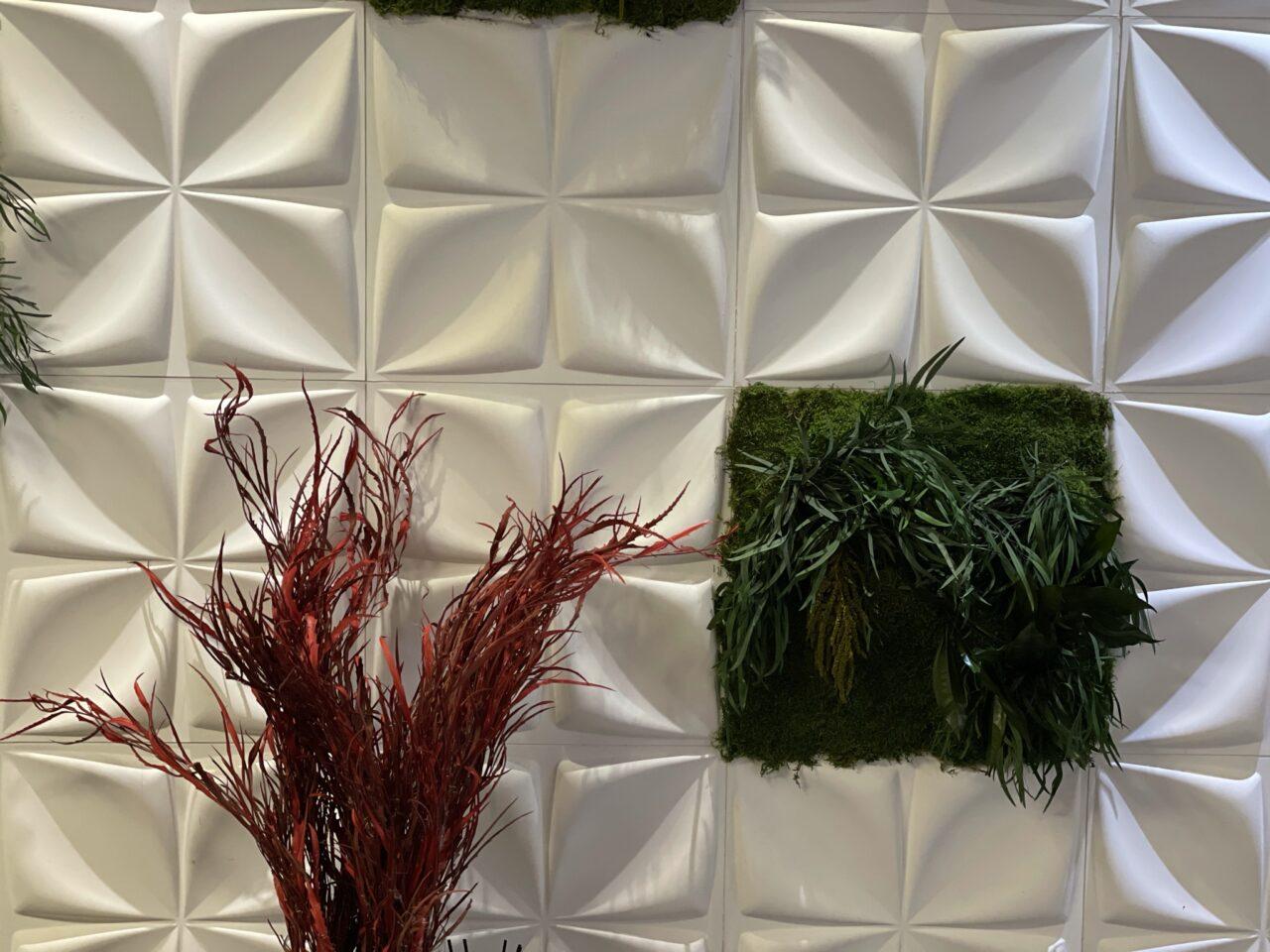 Ιατρείο διατηρημένα φυτά