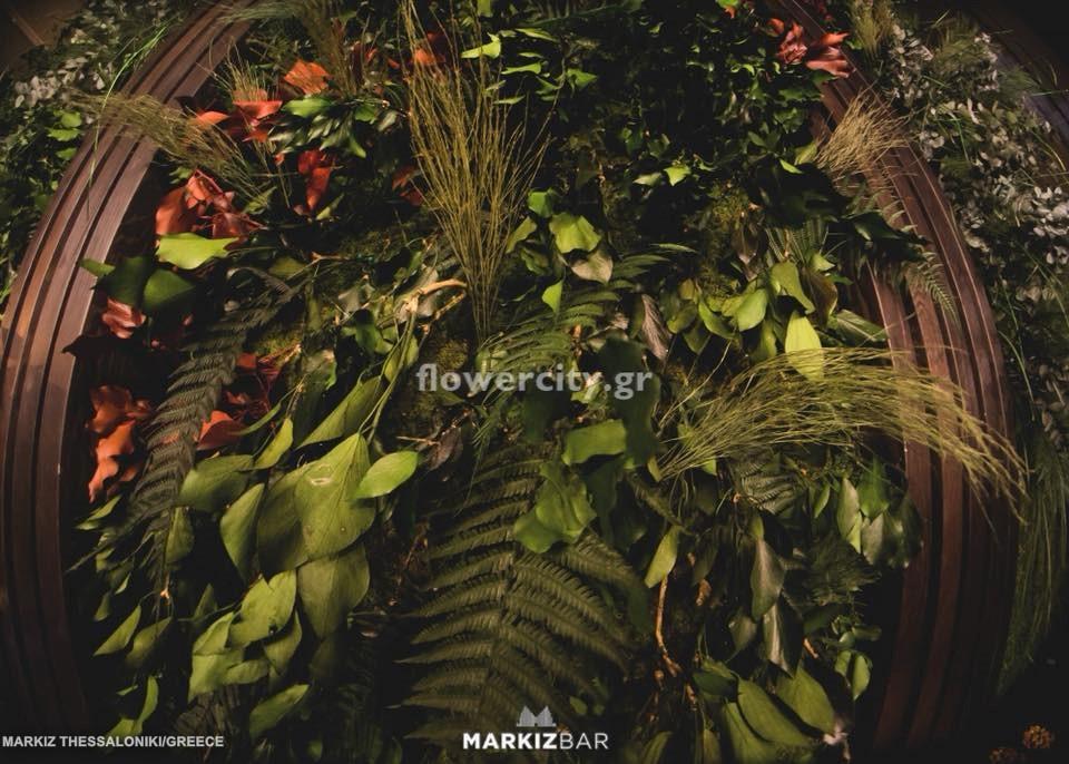MARKIZ διατηρημένα φυτά