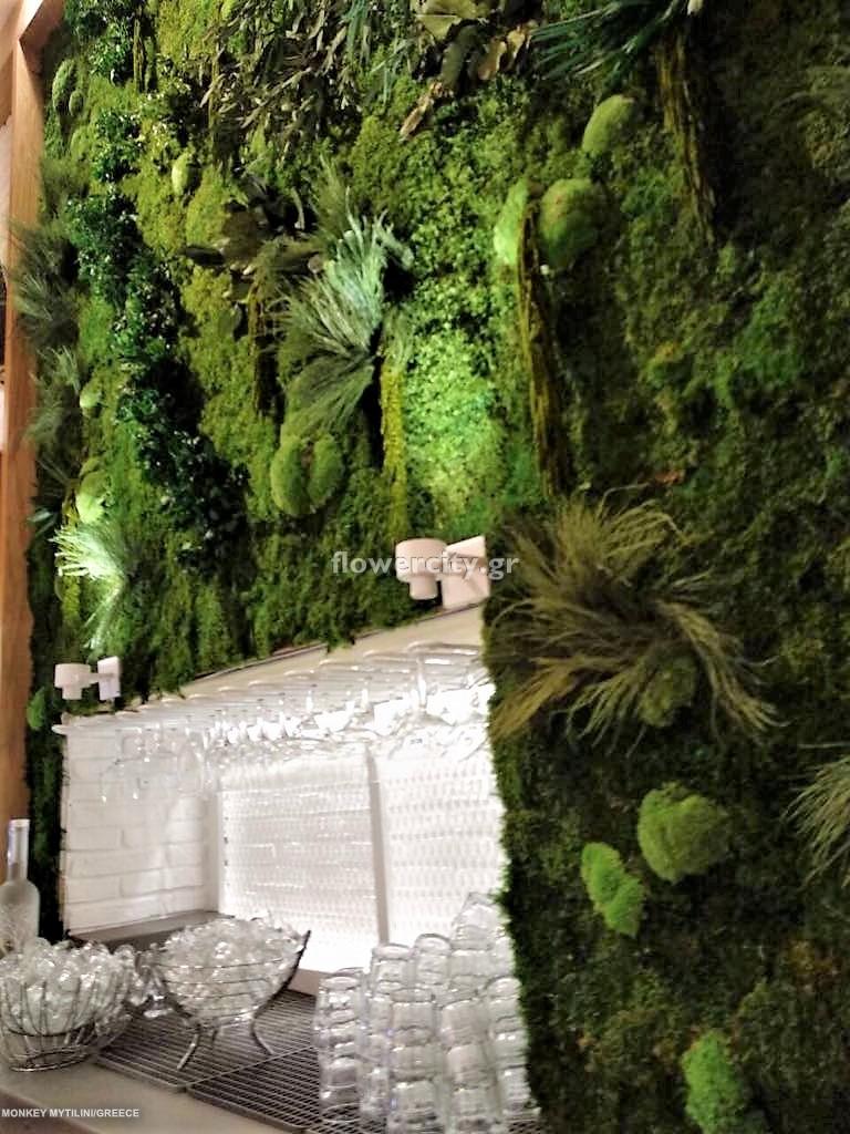 MONKEY ESPRESSO BAR διατηρημένα φυτά