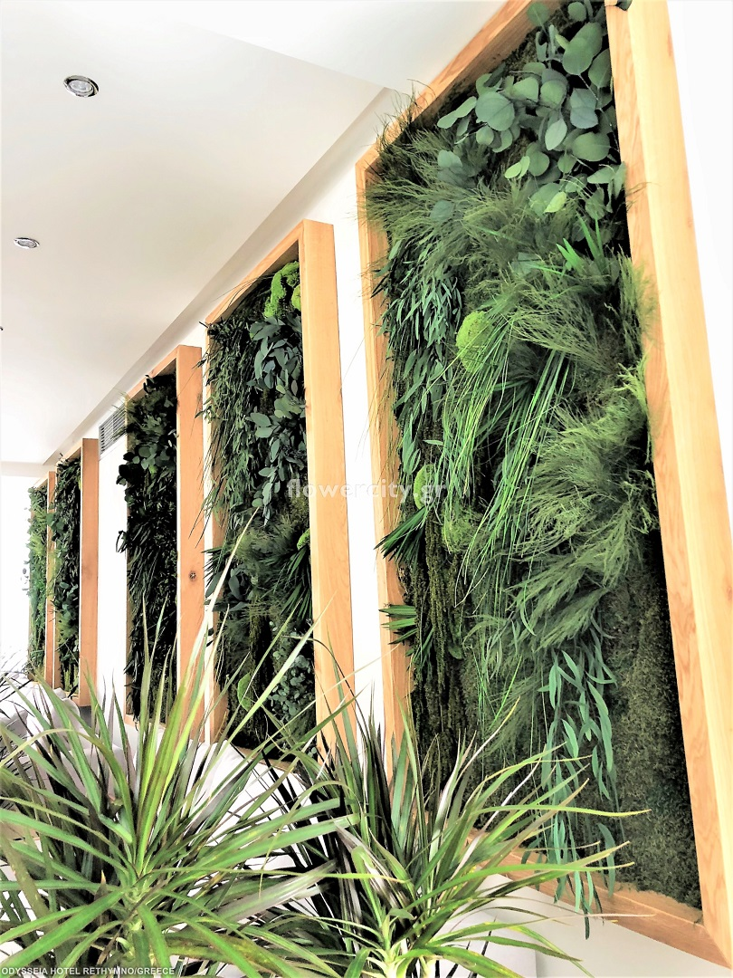 ODYSSIA BEACH HOTEL διατηρημένα φυτά