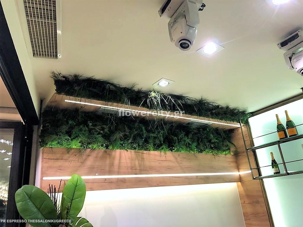 PR ESPRESSO BAR διατηρημένα φυτά