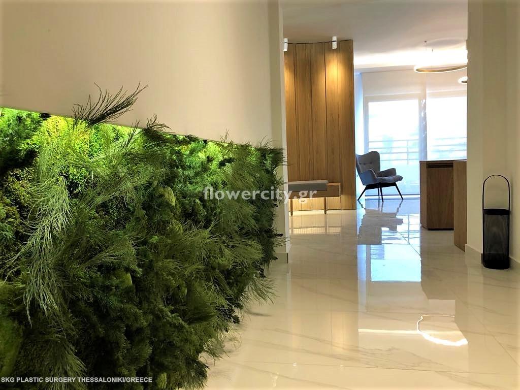 SKG PLASTIC SURGERY διατηρημένα φυτά