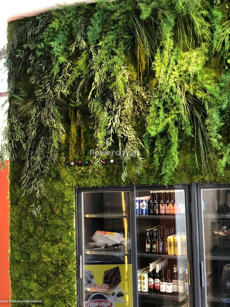 SNAP STREET MARKET διατηρημένα φυτά
