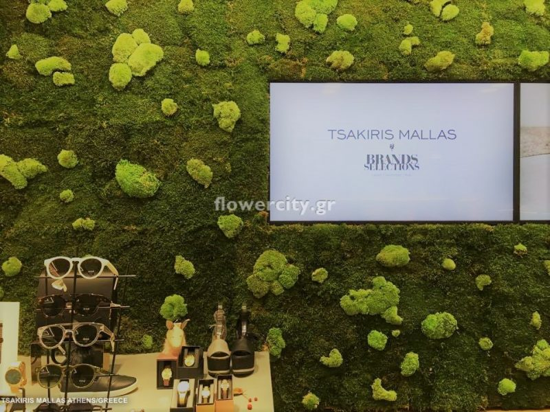 TSAKIRIS MALLAS διατηρημένα φυτά