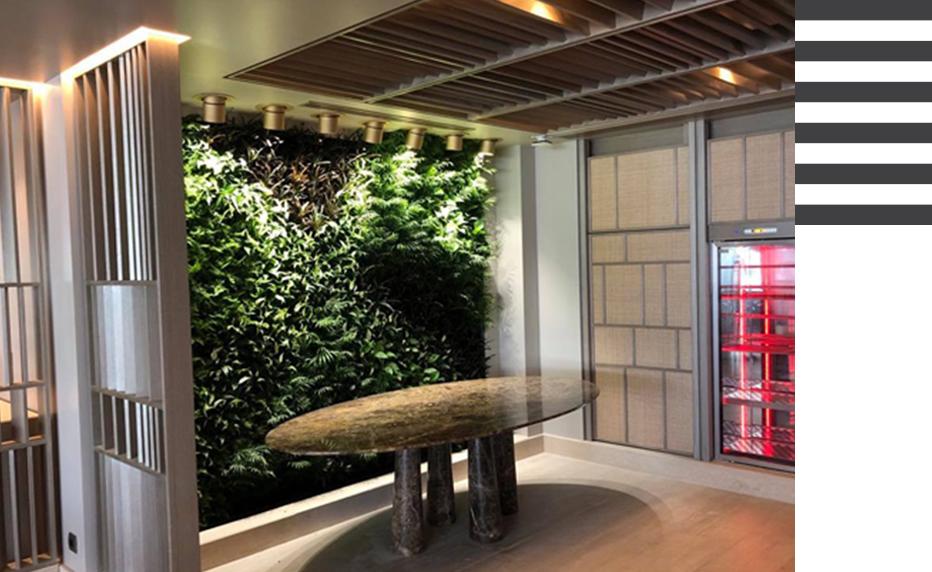 Flowercity πράσινοι τοίχοι