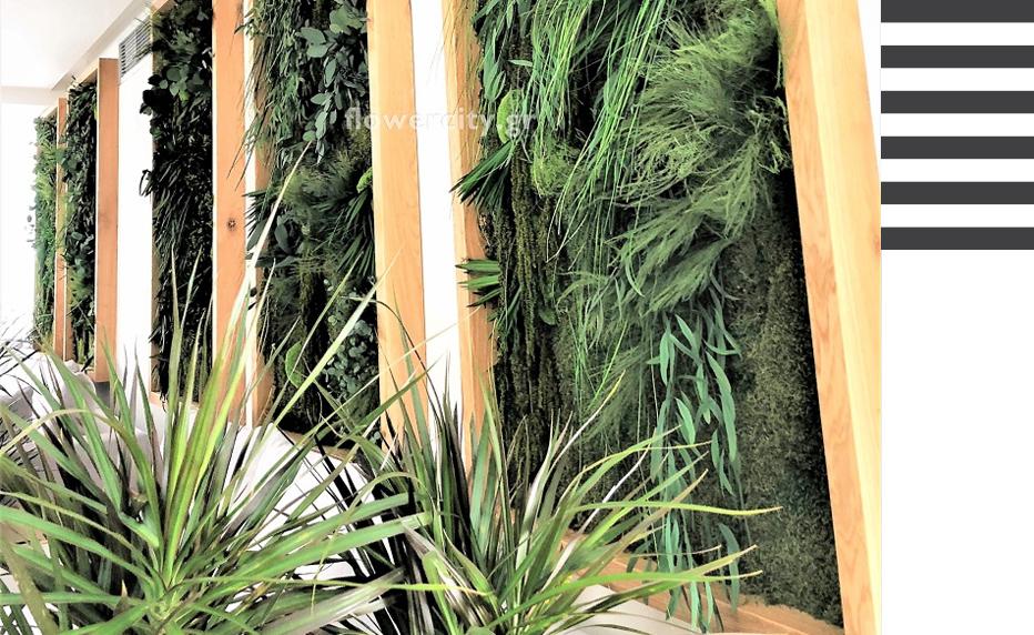 flowercity τοιχοι με διατηρημένα φυτά